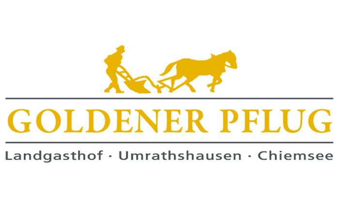 Goldener Pflug - Winter